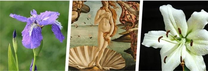 卫生间竟能如此复古与优雅这款有魔法的瓷砖太神了